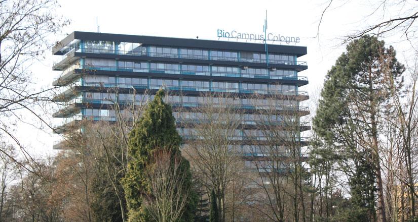 Köln Bocklemünd Immobilienmakler Köln