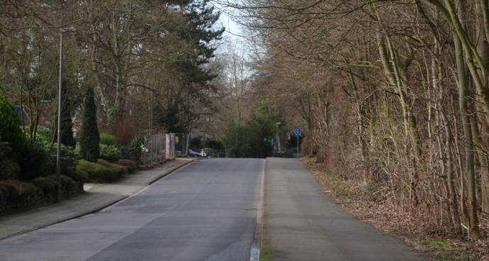 Köln Hahnwald Immobilienmakler Köln