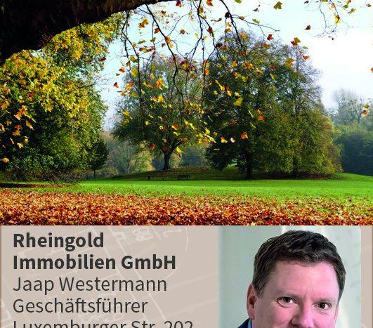 Immobilienmakler Köln Expertentipp