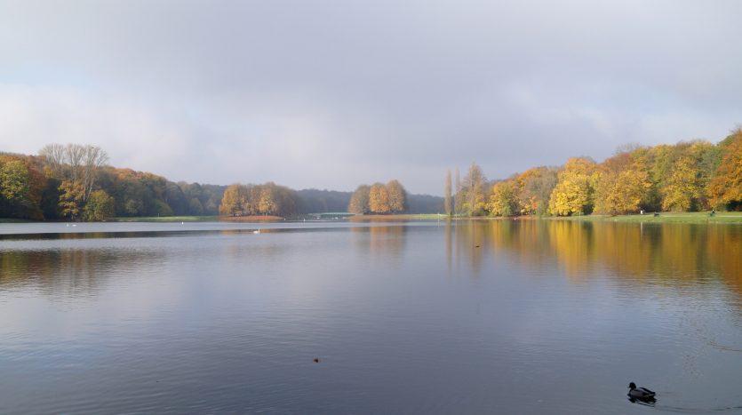 Parks in Sülz - Decksteiner Weiher
