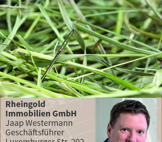 Needle in a hay stack - a proverb Nadel im Heuhaufen, Immobilienmakler Expertentipps